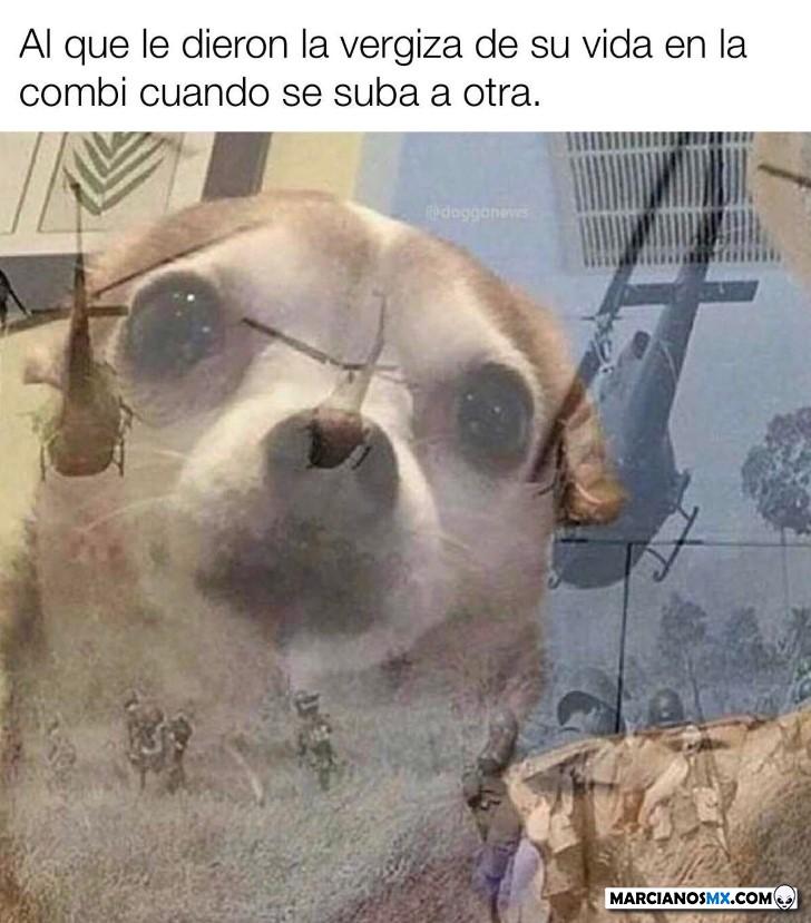 Marcianadas 443 07082020001309 (10)