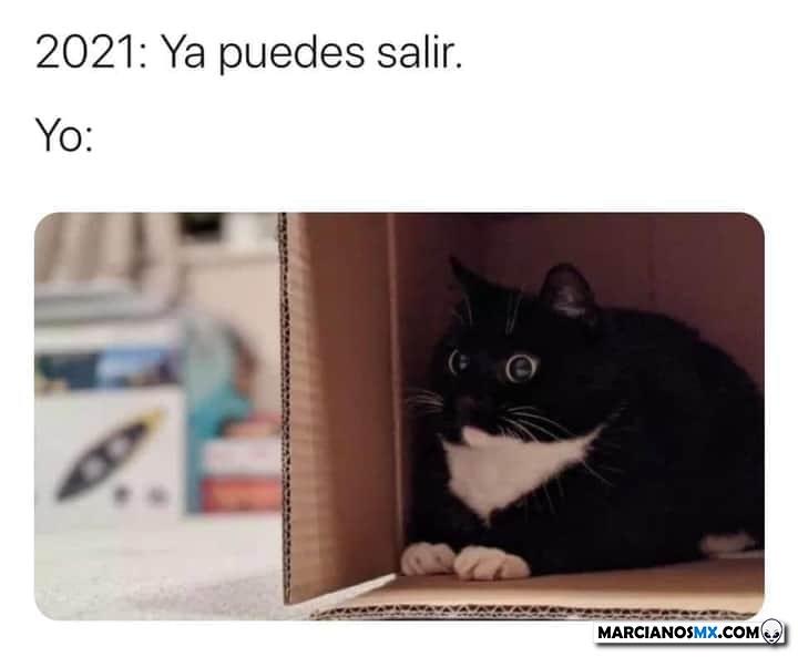 Marcianadas 443 07082020001309 (145)