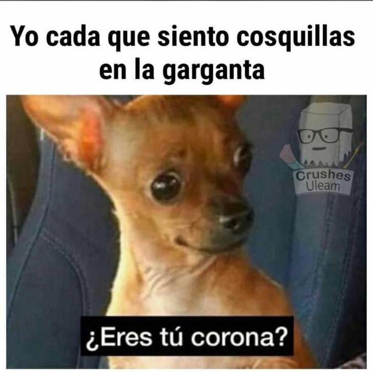 Marcianadas 443 07082020001309 (204)