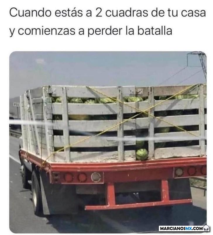 Marcianadas 443 07082020001309 (22)
