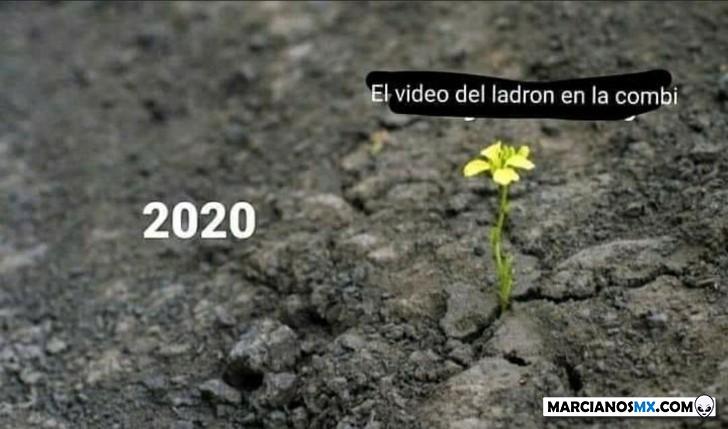 Marcianadas 443 07082020001309 (264)