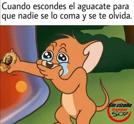 Marcianadas 443 07082020001309 (28)
