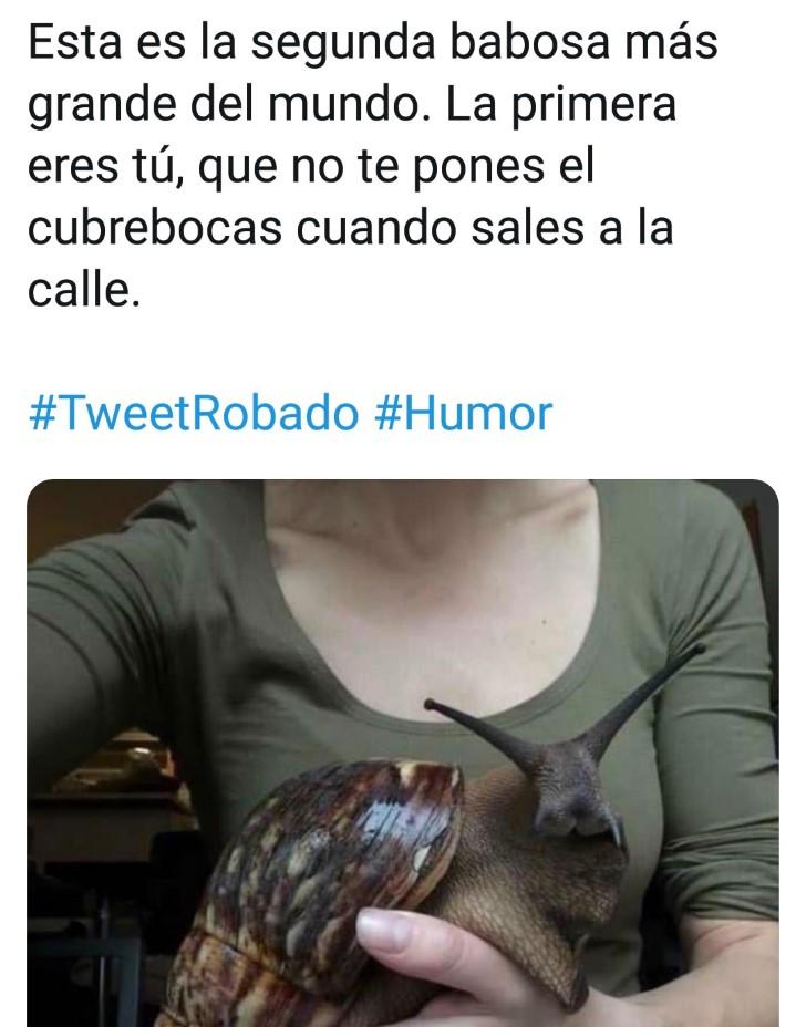 Marcianadas 443 07082020001309 (343)