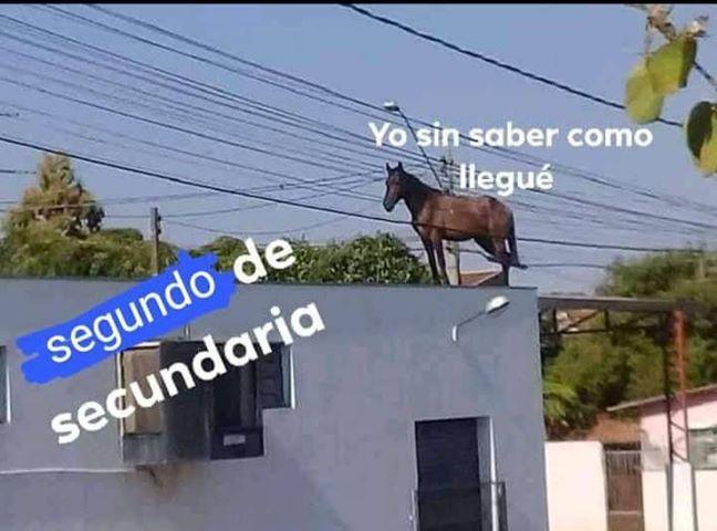 Marcianadas 443 07082020001309 (67)