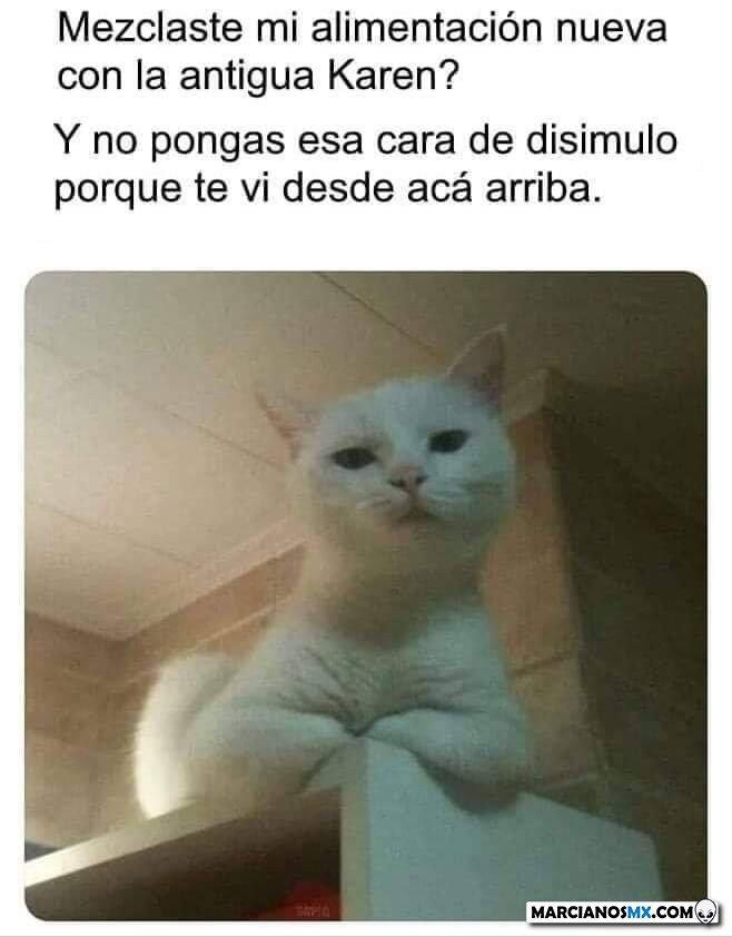 Marcianadas 444 14082020001436 (113)