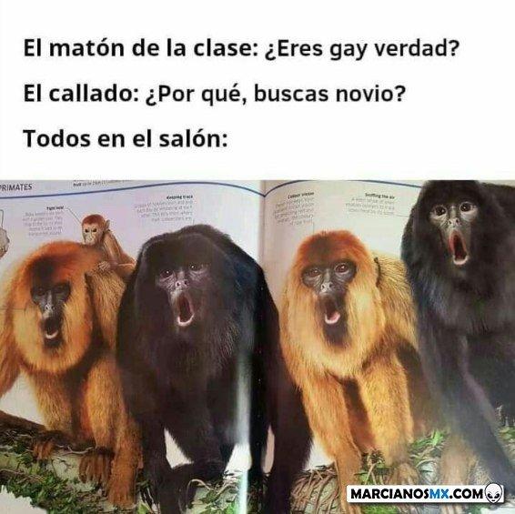 Marcianadas 444 14082020001436 (177)