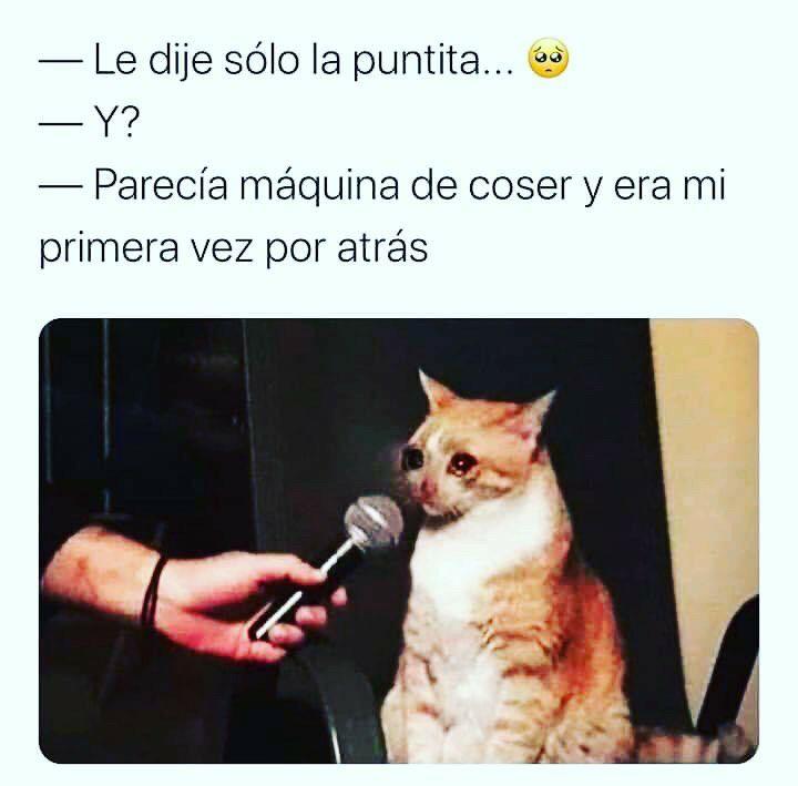 Marcianadas 444 14082020001436 (244)