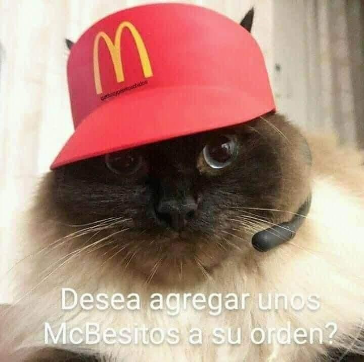 Marcianadas 445 21082020001323 (137)