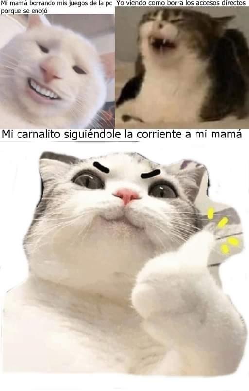 Marcianadas 445 21082020001323 (149)