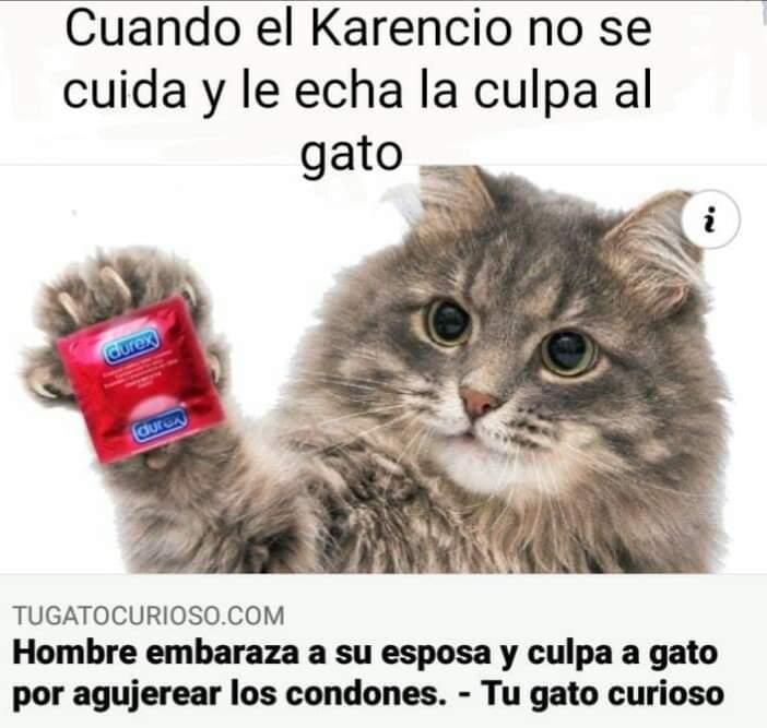 Marcianadas 445 21082020001323 (152)