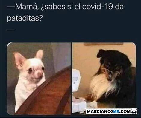Marcianadas 445 21082020001323 (278)