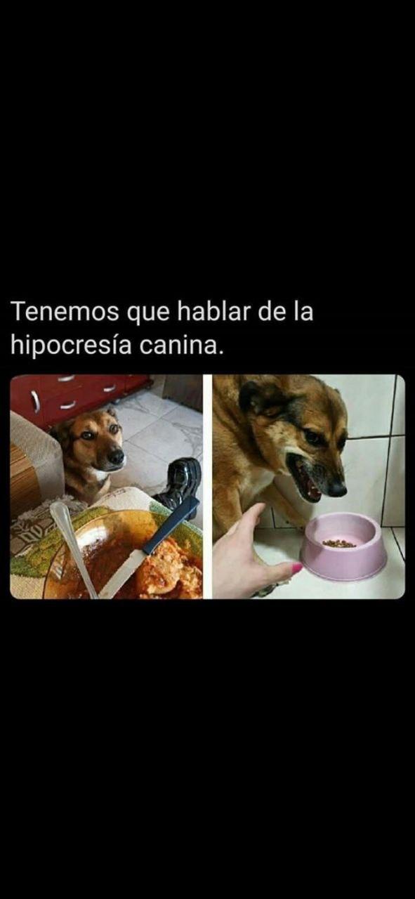 Marcianadas 445 21082020001323 (338)