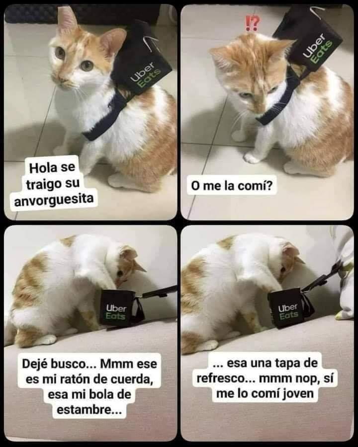 Marcianadas 446 28082020001456 (135)