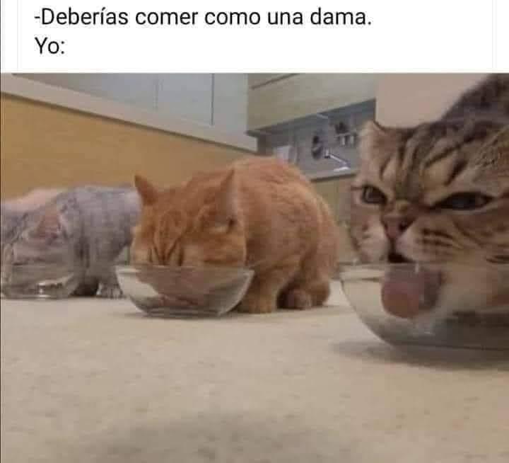 Marcianadas 446 28082020001456 (137)