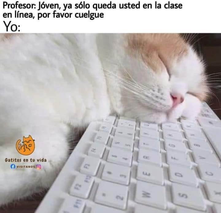 Marcianadas 446 28082020001456 (94)