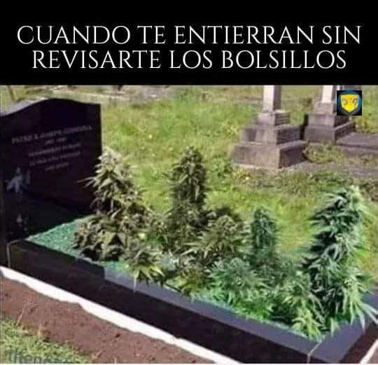 Marcianadas 447 04092020001317 (288)