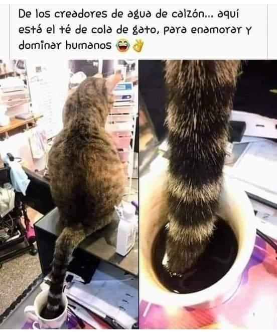 Marcianadas 448 11092020001340 (133)