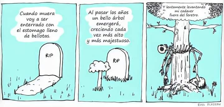 Marcianadas 448 11092020001340 (143)
