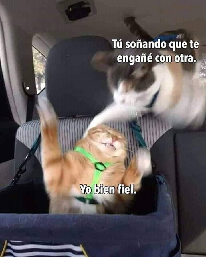 Marcianadas 448 11092020001340 (167)