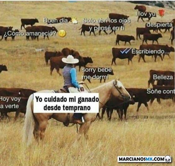 Marcianadas 448 11092020001340 (199)