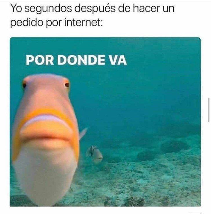 Marcianadas 448 11092020001340 (236)