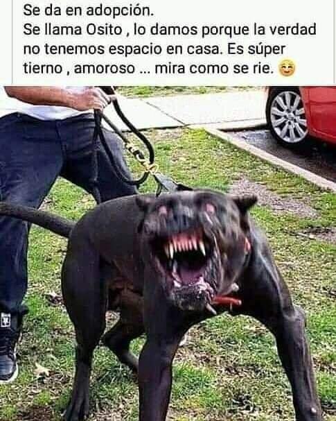 Marcianadas 449 18092020001427 (158)
