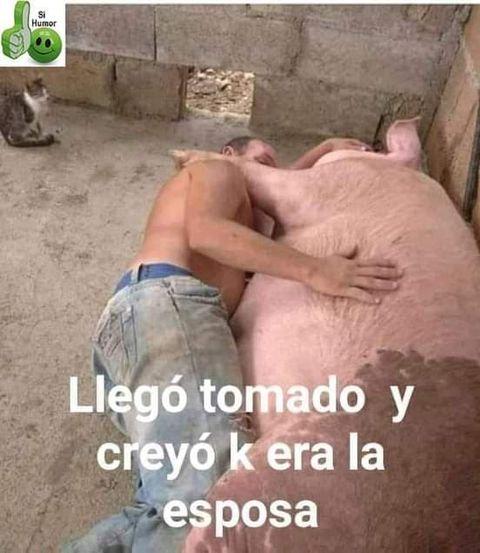 Marcianadas 449 18092020001427 (175)