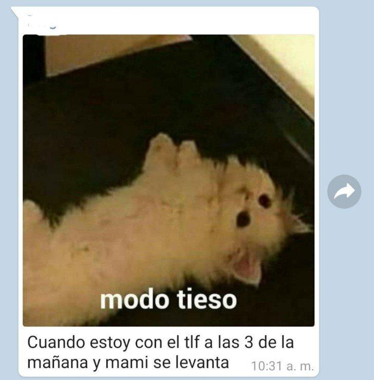 Marcianadas 449 18092020001427 (23)