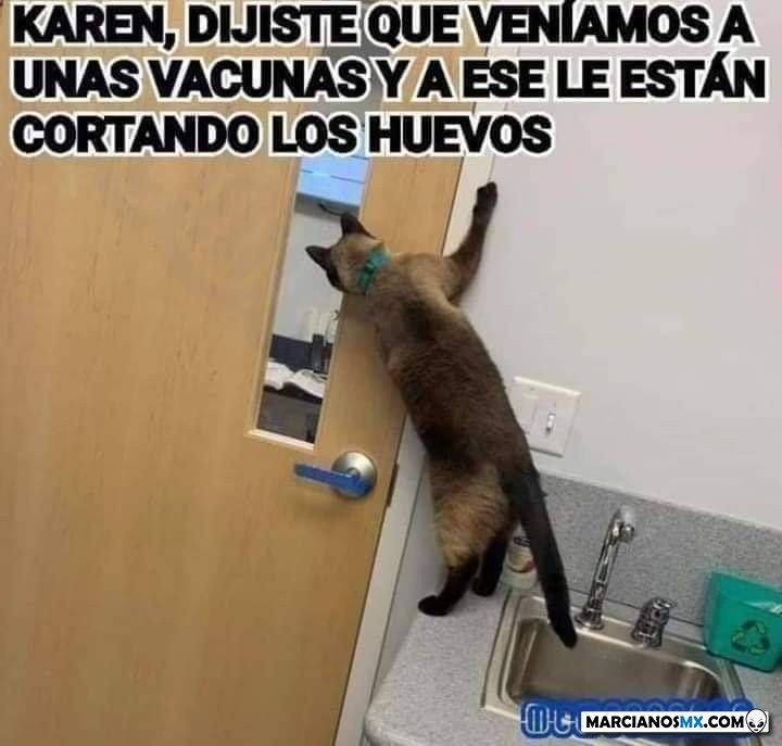 Marcianadas 450 25092020001444 (114)