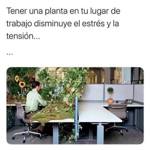 Marcianadas 450 25092020001444 (196)