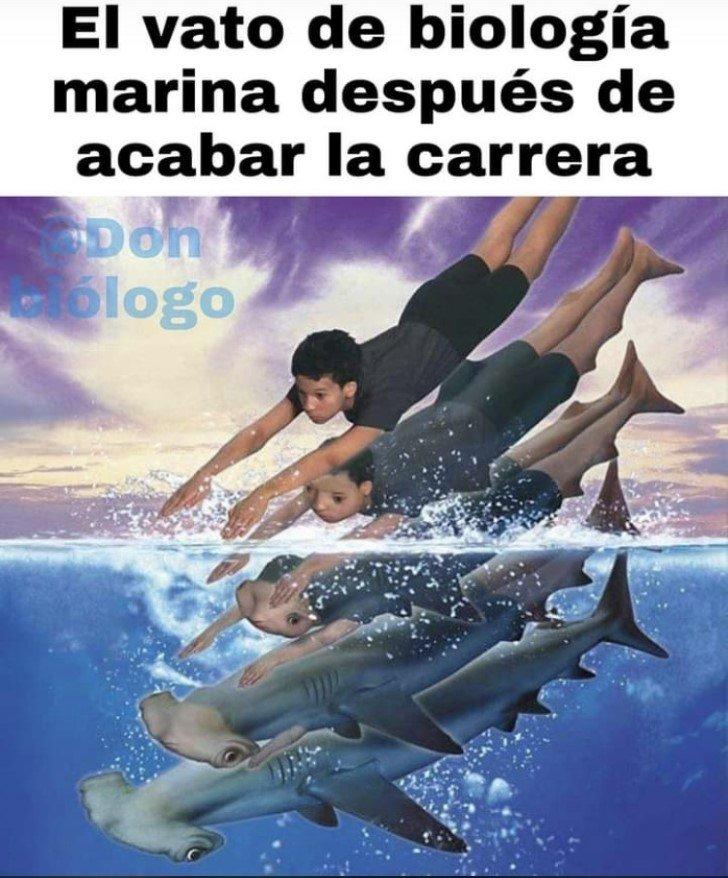 Marcianadas 452 09102020001447 (10)