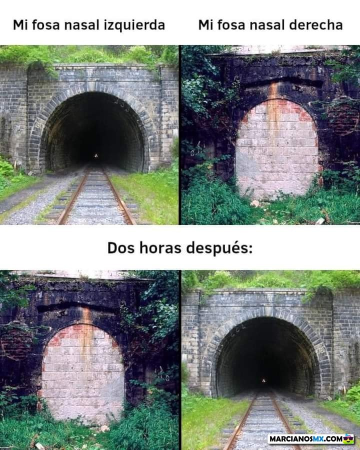 Marcianadas 452 09102020001447 (127)