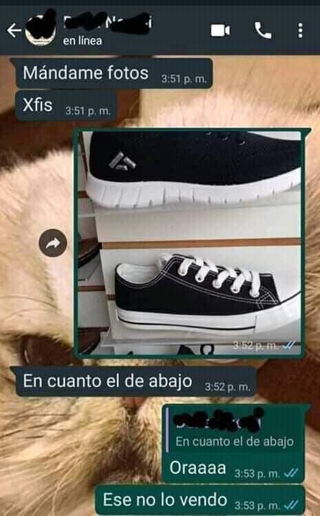 Marcianadas 452 09102020001447 (15)