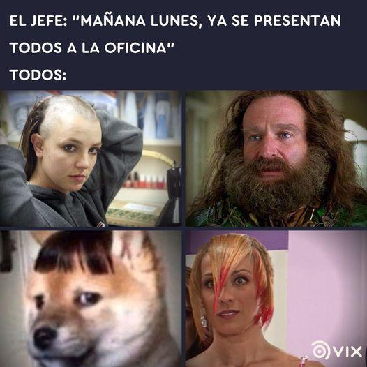 Marcianadas 453 16102020001358 (11)
