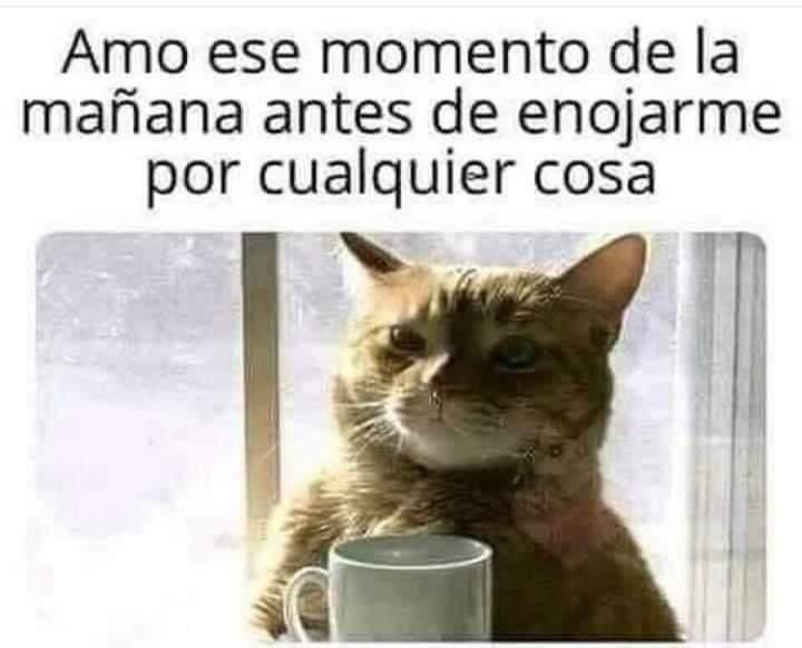 Marcianadas 453 16102020001358 (12)