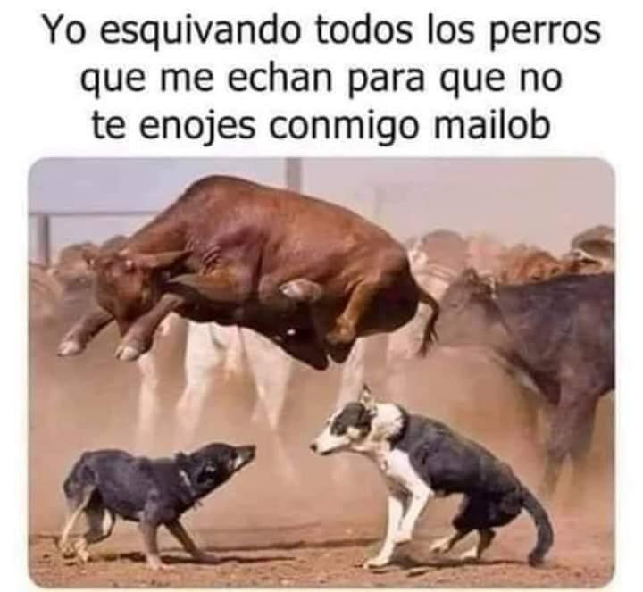 Marcianadas 453 16102020001358 (167)
