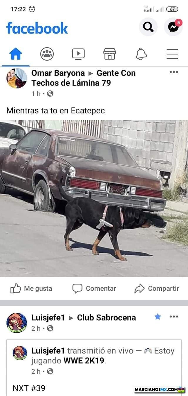 Marcianadas 453 16102020001358 (182)