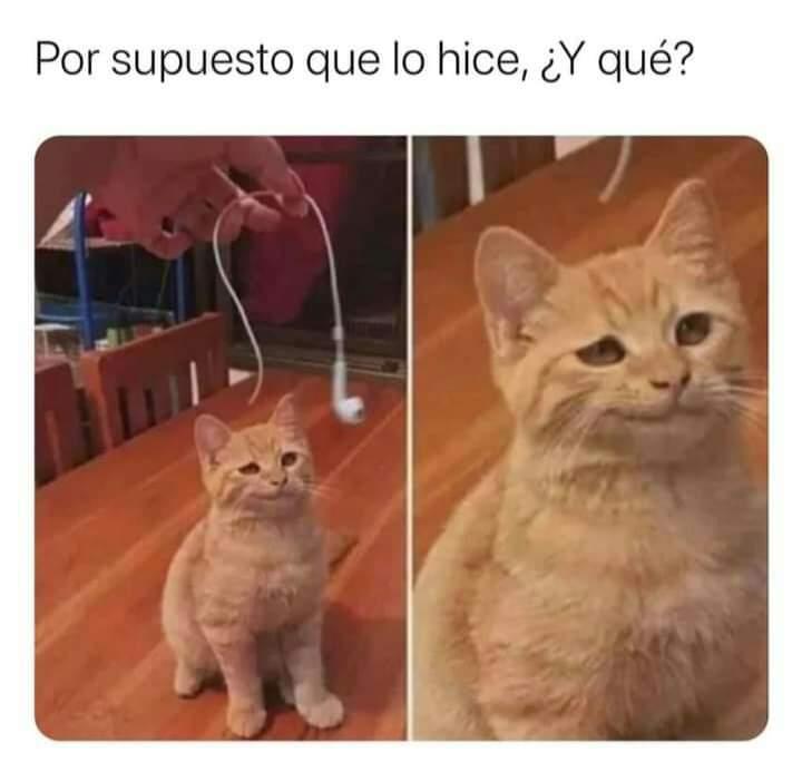 Marcianadas 453 16102020001358 (196)