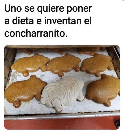 Marcianadas 453 16102020001358 (6)