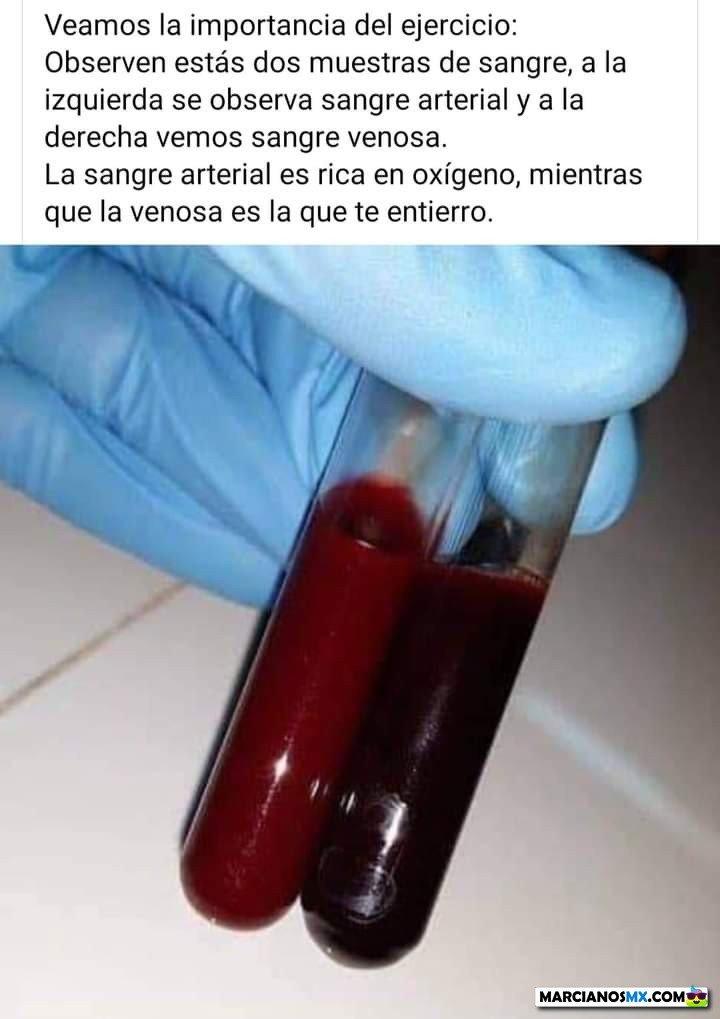 Marcianadas 454 23102020001504 (143)