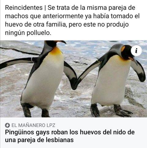 Marcianadas 455 30102020001239 (188)