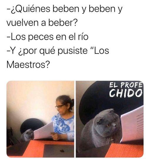 Marcianadas 455 30102020001239 (6)