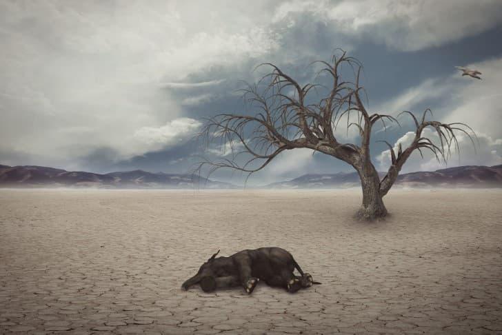 extincion de la vida en la tierra