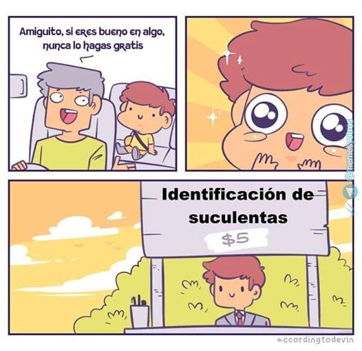 Marcianadas 458 20112020001412 (221)