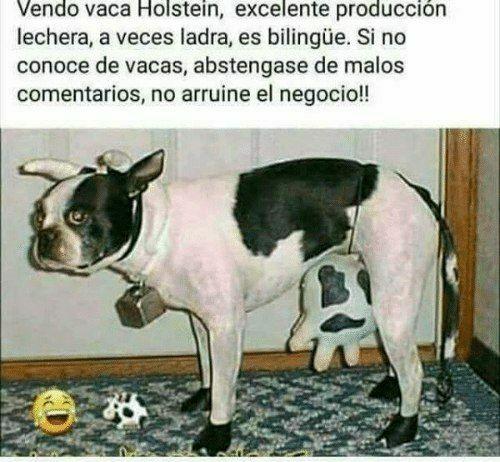 Marcianadas 458 20112020001412 (231)