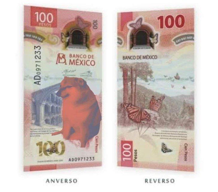 Marcianadas 458 20112020001412 (49)