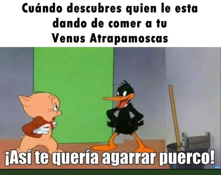 Marcianadas 459 27112020001413 (150)