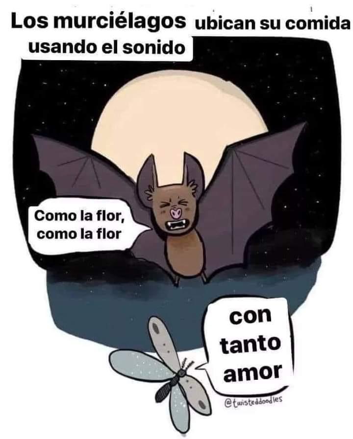 Marcianadas 459 27112020001413 (155)