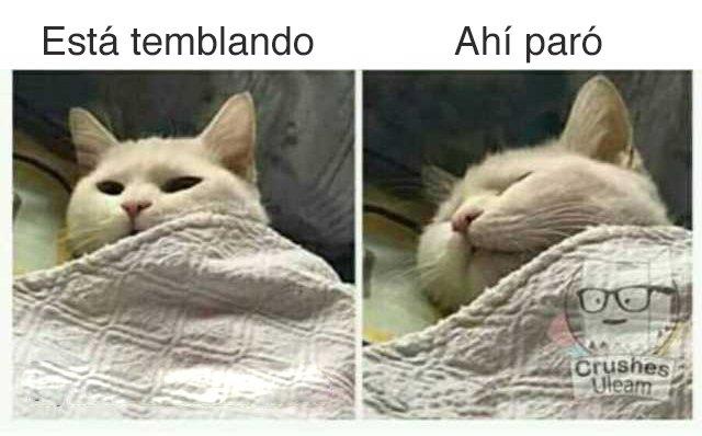 Marcianadas 459 27112020001413 (3)