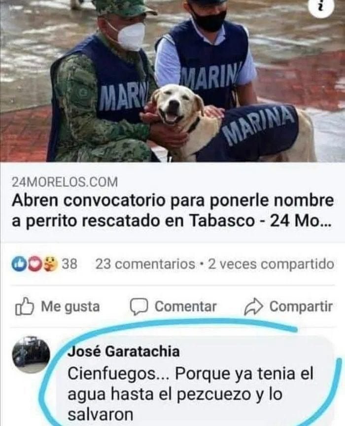Marcianadas 459 27112020001413 (46)